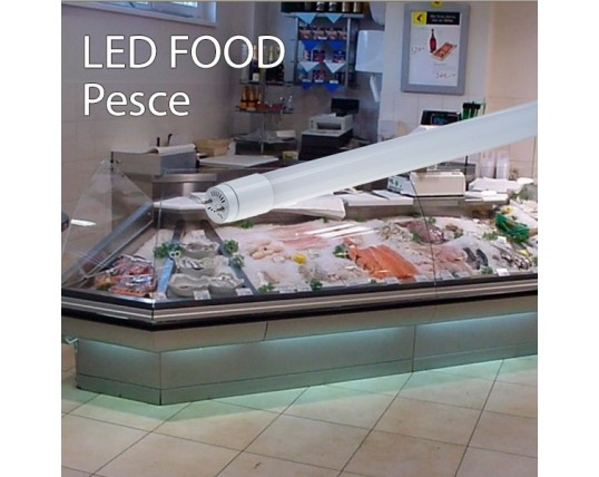 Led per alimenti led shop europe