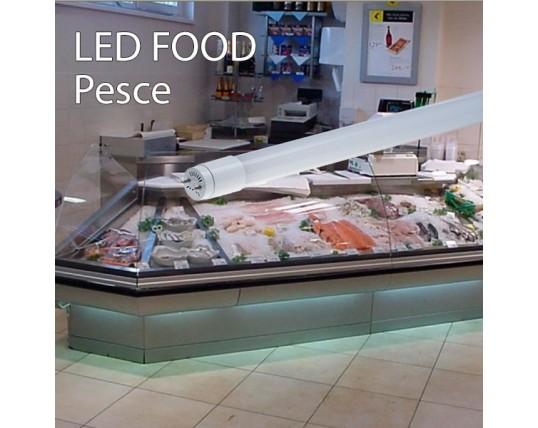 Plafoniere Per Negozi Alimentari : Illuminazione per il settore alimentare leditaly