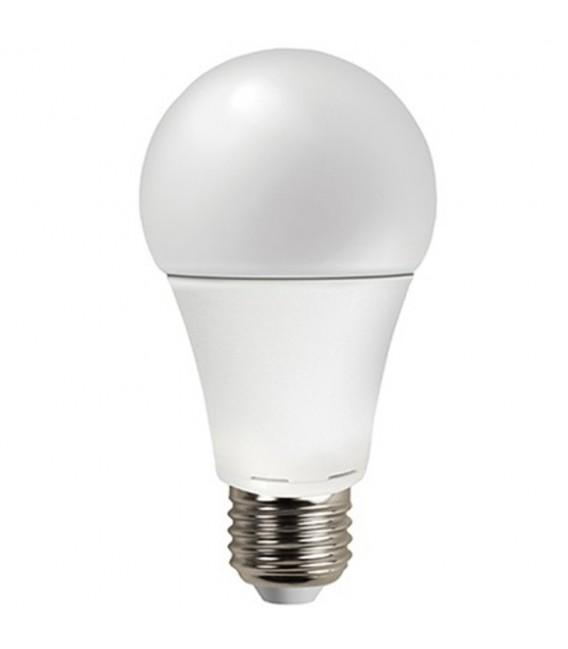 Lampadina LED Bulbo 12W A60